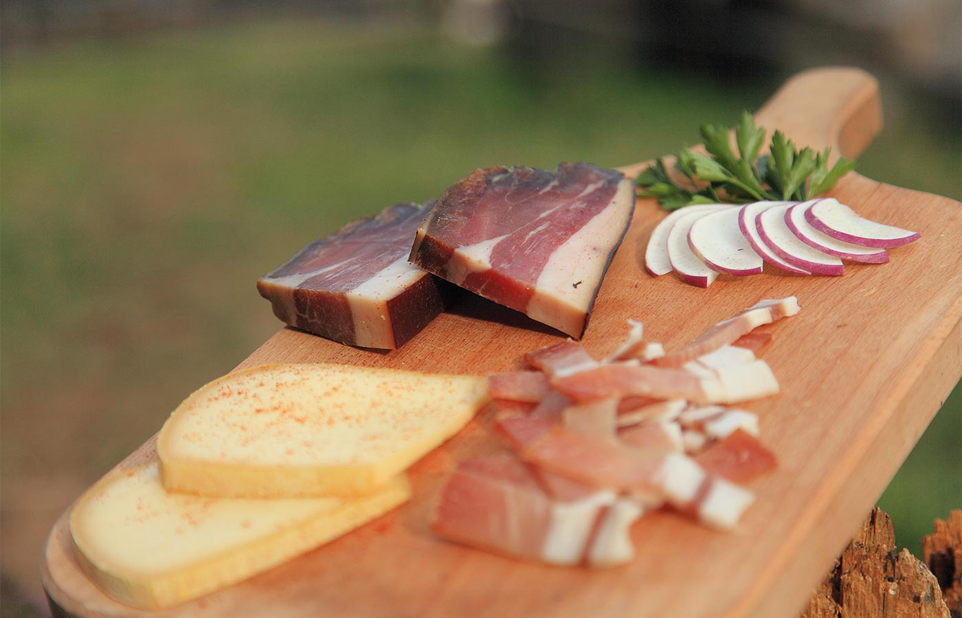 Speck cheese and radish from South Tyrol on chopping board