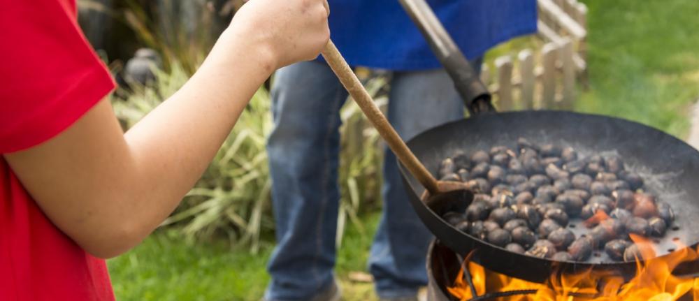 Goldener Herbst -  kulinarisch und aktiv